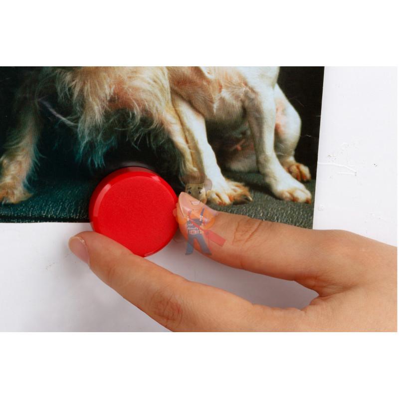 Магнит для магнитной доски Forceberg 30 мм, красный, 10шт. - фото 2