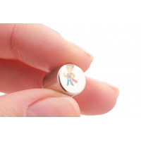 Индикатор магнитного поля, пленка - Неодимовый магнит диск 10х10 мм
